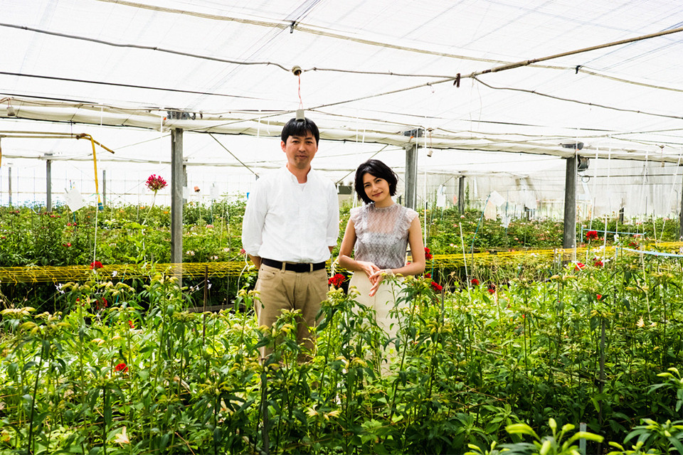 三宅花卉園(千葉県・茂原市)