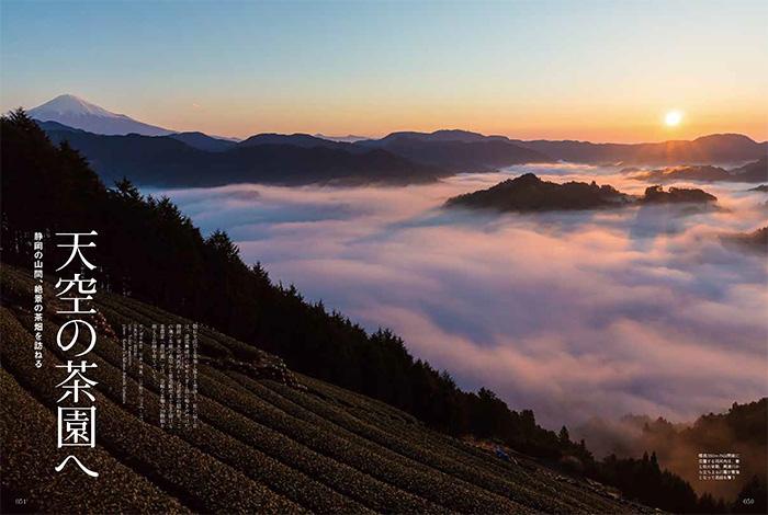 静岡の山間、絶景の茶畑を訪ねる 天空の茶園へ