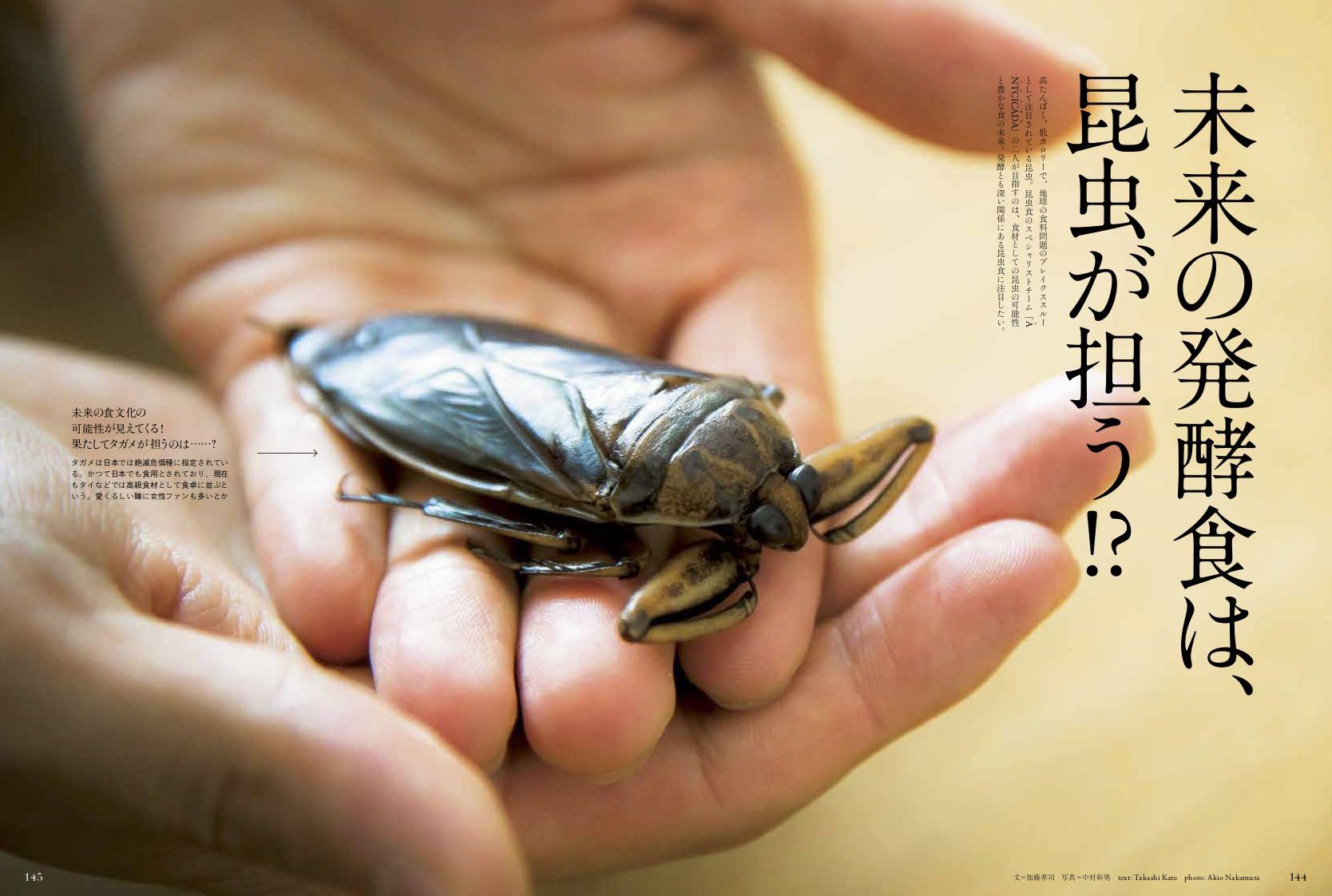 未来の発酵食品は、昆虫が担う!?