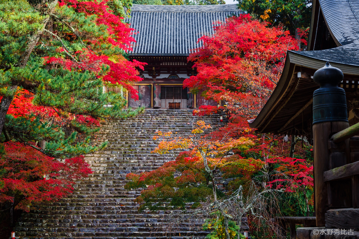 特集:京都の誘惑。<br />創刊8周年特別記念号、発売中です!