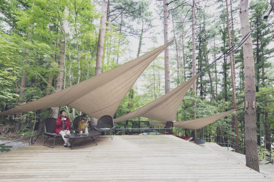森の声に耳を澄ませ<br/>五感を楽しませるグラマラスな滞在