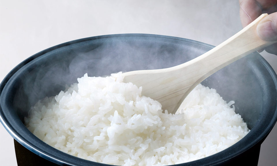 最新の炊飯科学で発見する、お米のテロワール