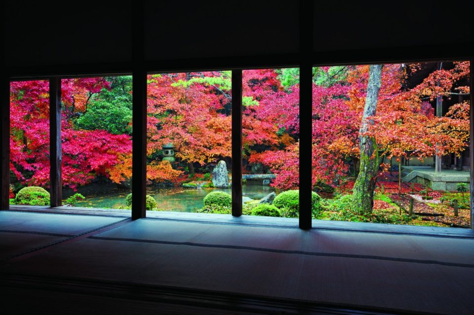 <b>秋の味覚を満喫する11月</b><br>~京都行事カレンダー2019~