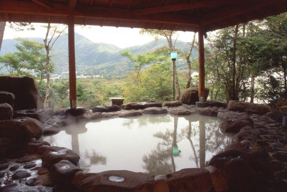 <b>大涌谷から湧き出る白濁の湯を老舗旅館で。仙郷楼 別邸「奥の樹々」</b>