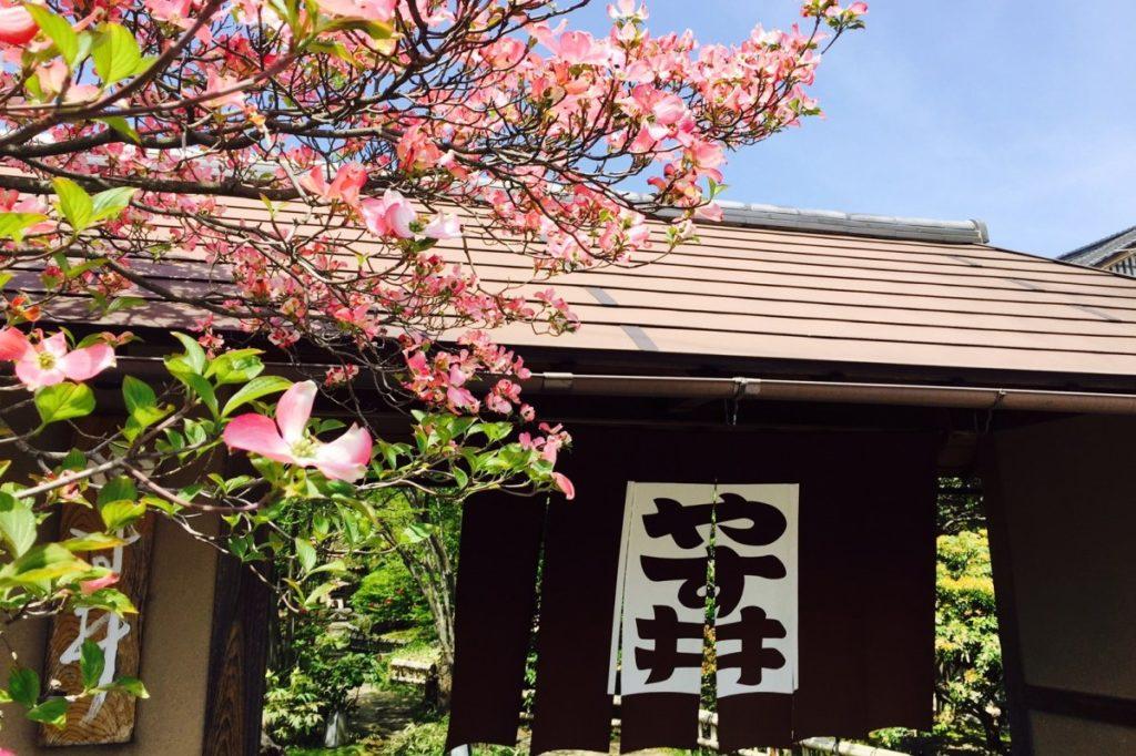 この秋冬、関西を旅するなら訪れたい</br>極上の名宿