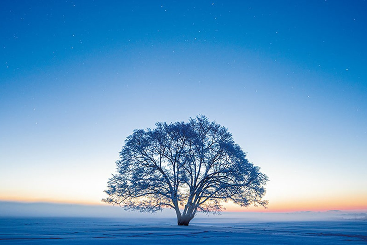 Discover Japan絶景プロジェクト<br>12月テーマ:年末年始