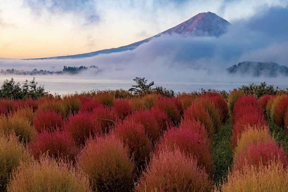 Discover Japan絶景プロジェクト<br>10月テーマ:紅葉