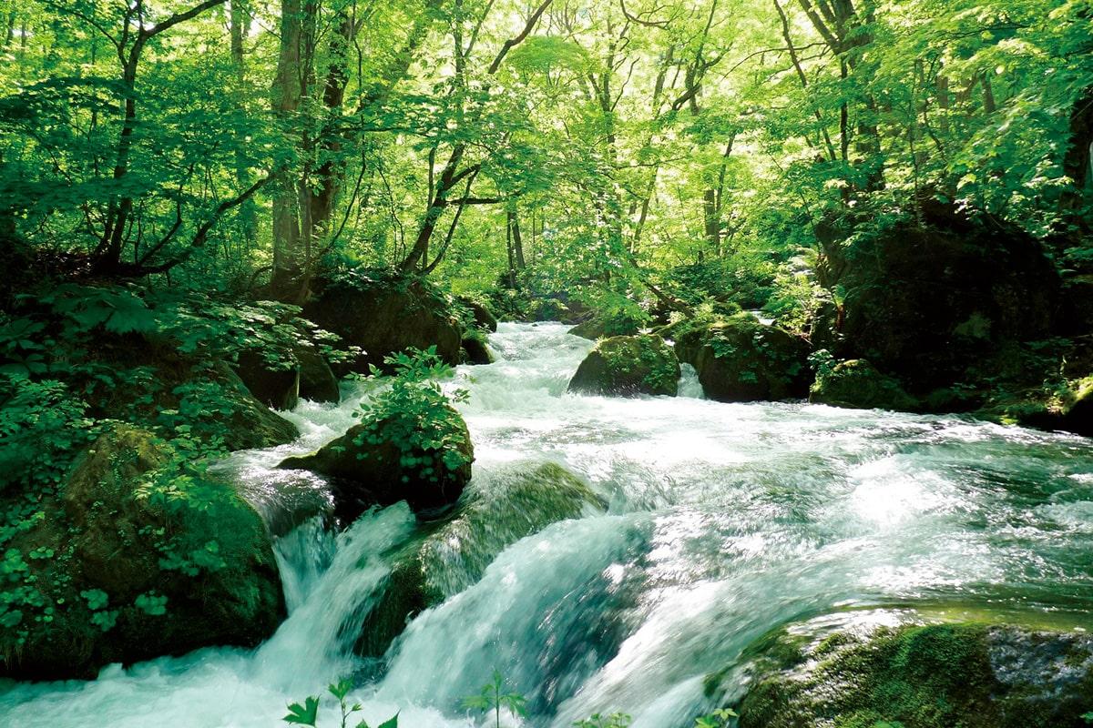 アートと伝統が交錯する<br>本州最北端の「青森県」