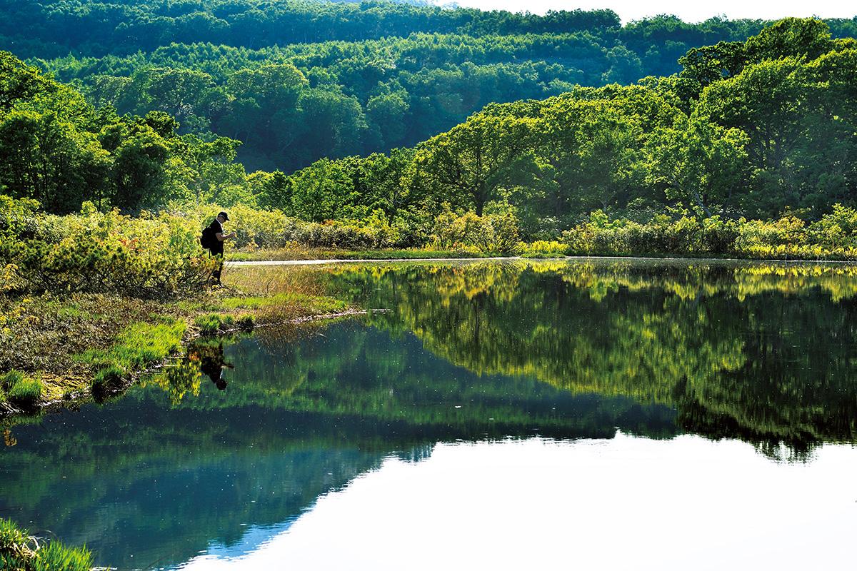 『そもざ』に『坐忘林』、そして羊蹄山<br>世界が憧れるニセコの夏遊び