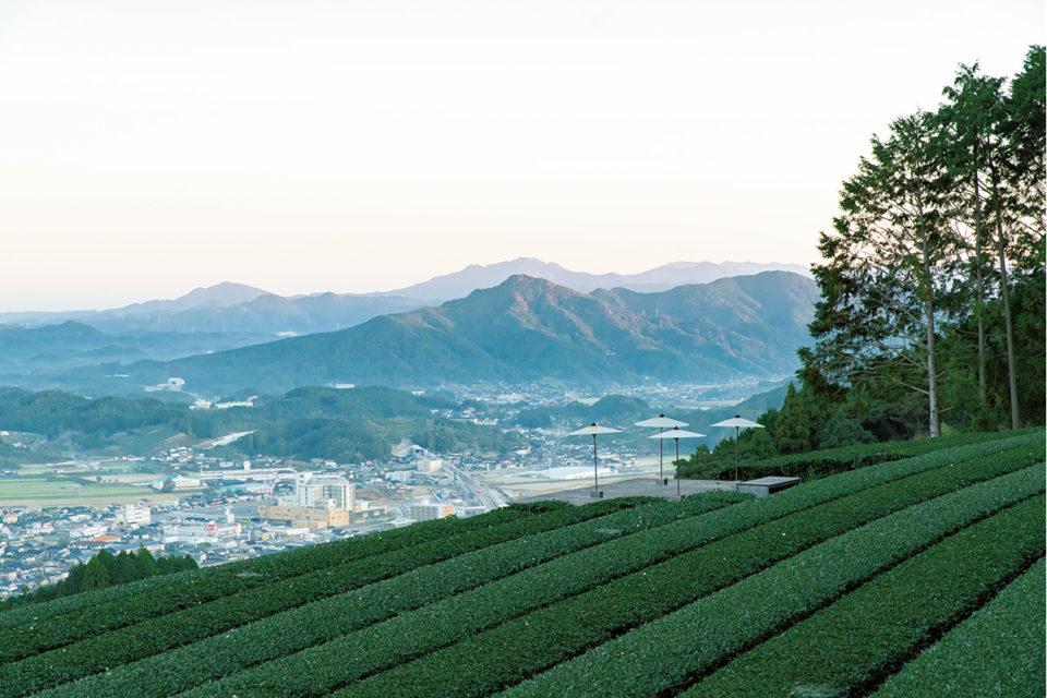 有田焼や伊万里焼などが有名な<br>日本随一の陶磁器の産地「佐賀県」