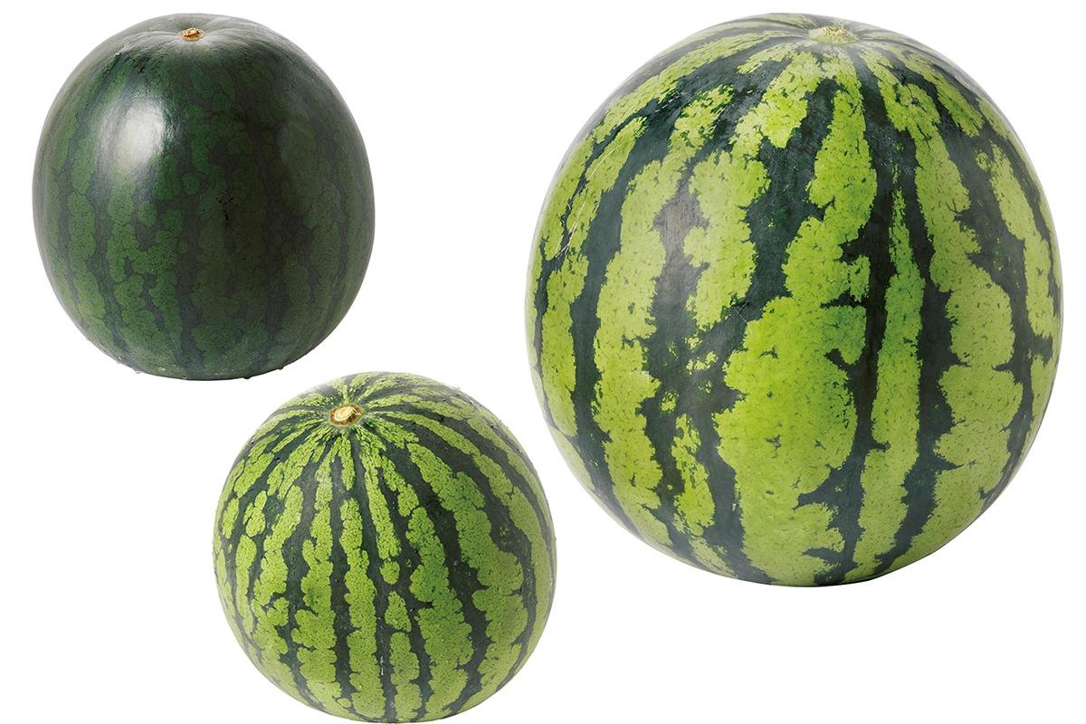収穫 日本 量 果物