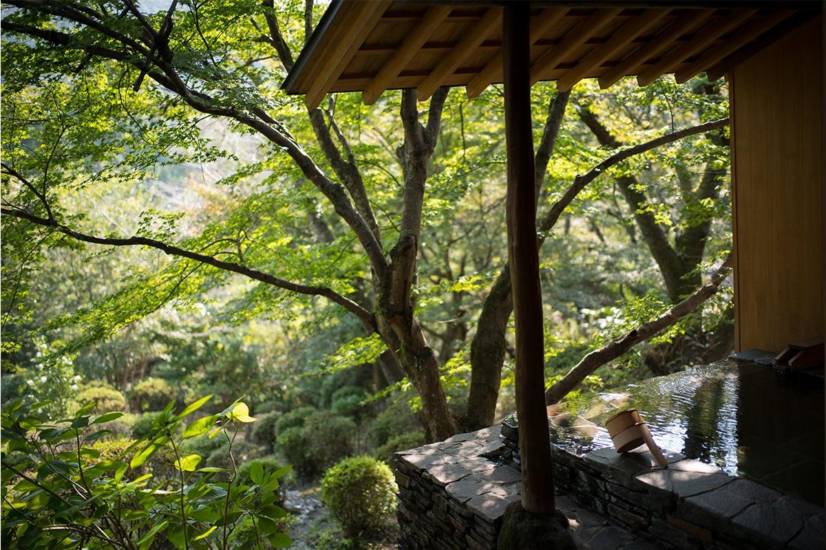武雄鍋島家ゆかり15万坪の御船山楽園の中に佇む、数寄屋造り純和風旅館「御宿 竹林亭」