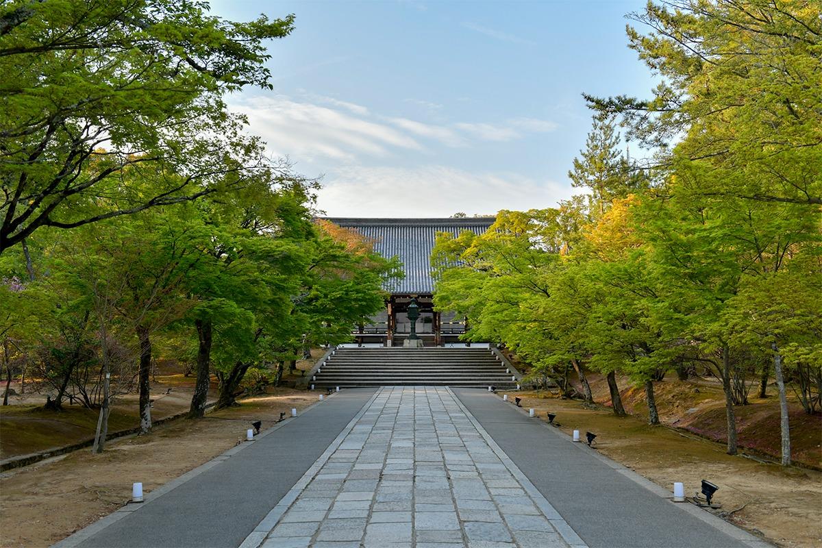 1日1組限定!世界遺産「仁和寺」のプライベートツアーとは?