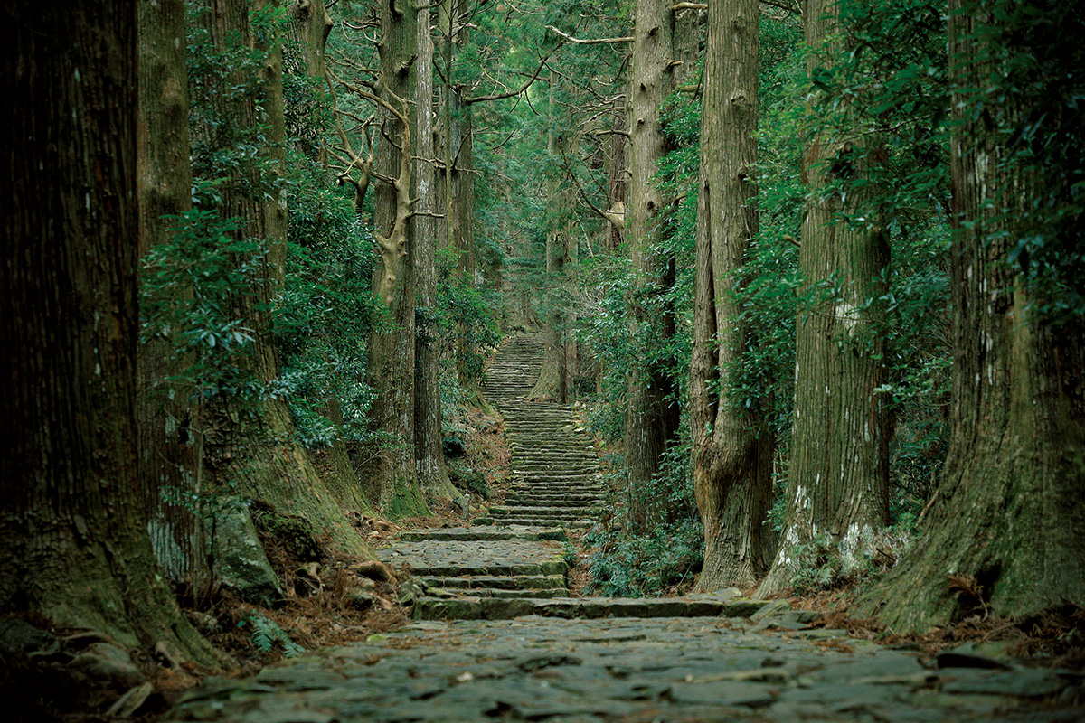 高野山と熊野三山をめぐるスマートバス旅<br>癒しが必要ないまこそ和歌山の世界遺産へ。【後編】
