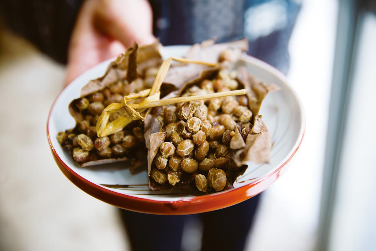 """塩が手に入りにくいゆえ<br>菌や作物で工夫を凝らした""""山の発酵""""【前編】<br><small>《ニッポン全国発酵食品名鑑》</small>"""