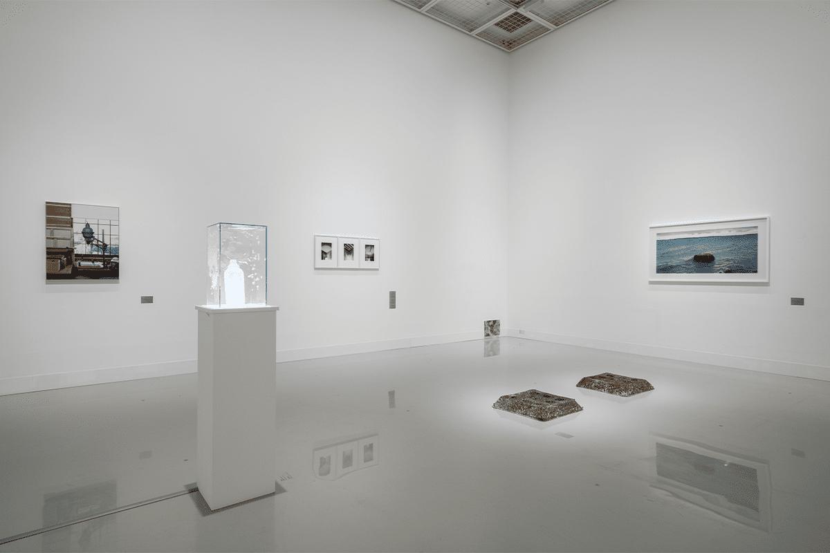 資生堂ギャラリー<br>「現代美術を主軸に、同時代の表現を紹介」