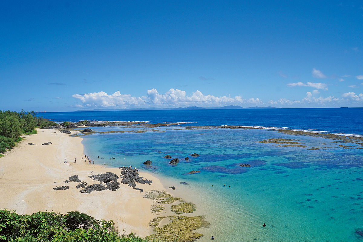 豊かな自然と独特な文化が息づく<br>ユニークな徳之島【前編】<br><small>《世界自然遺産をめぐる旅》</small>
