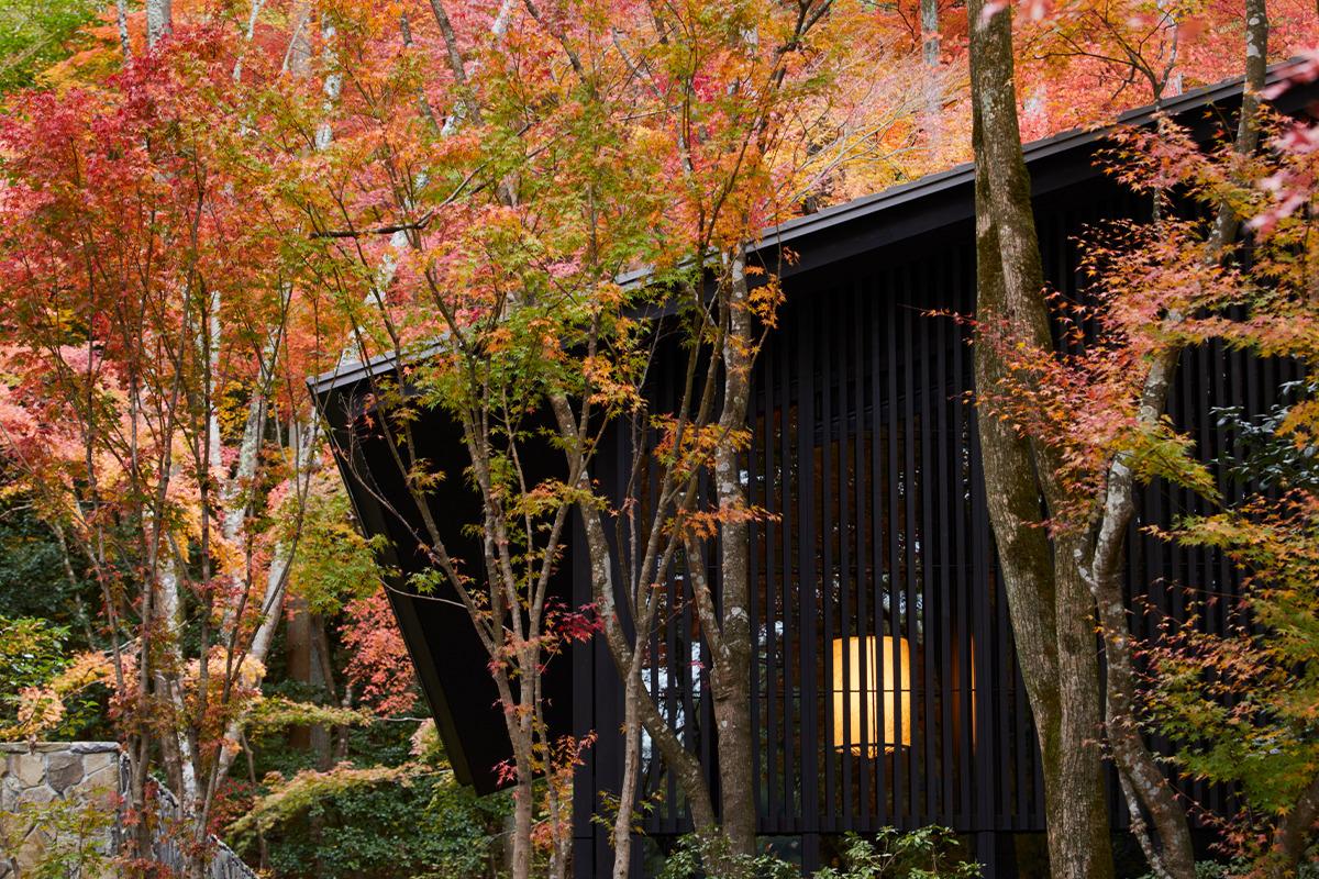 《アマン京都》<br>秋色の森の庭で文化に浸る秋プラン<br><small>日本の伝統的な篠笛、秋色に染まる京都を空から眺める</small>
