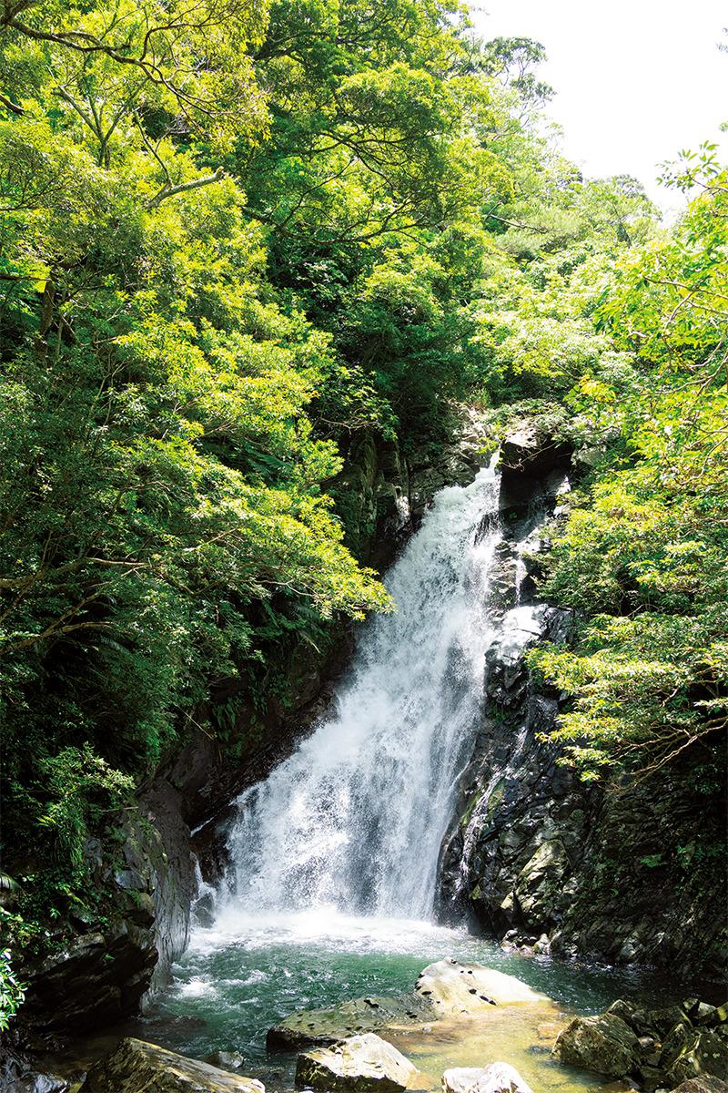 ネイチャーツアーで体感する<br>沖縄島最大の滝「比地大滝」<br><small>《世界自然遺産をめぐる旅》</small>
