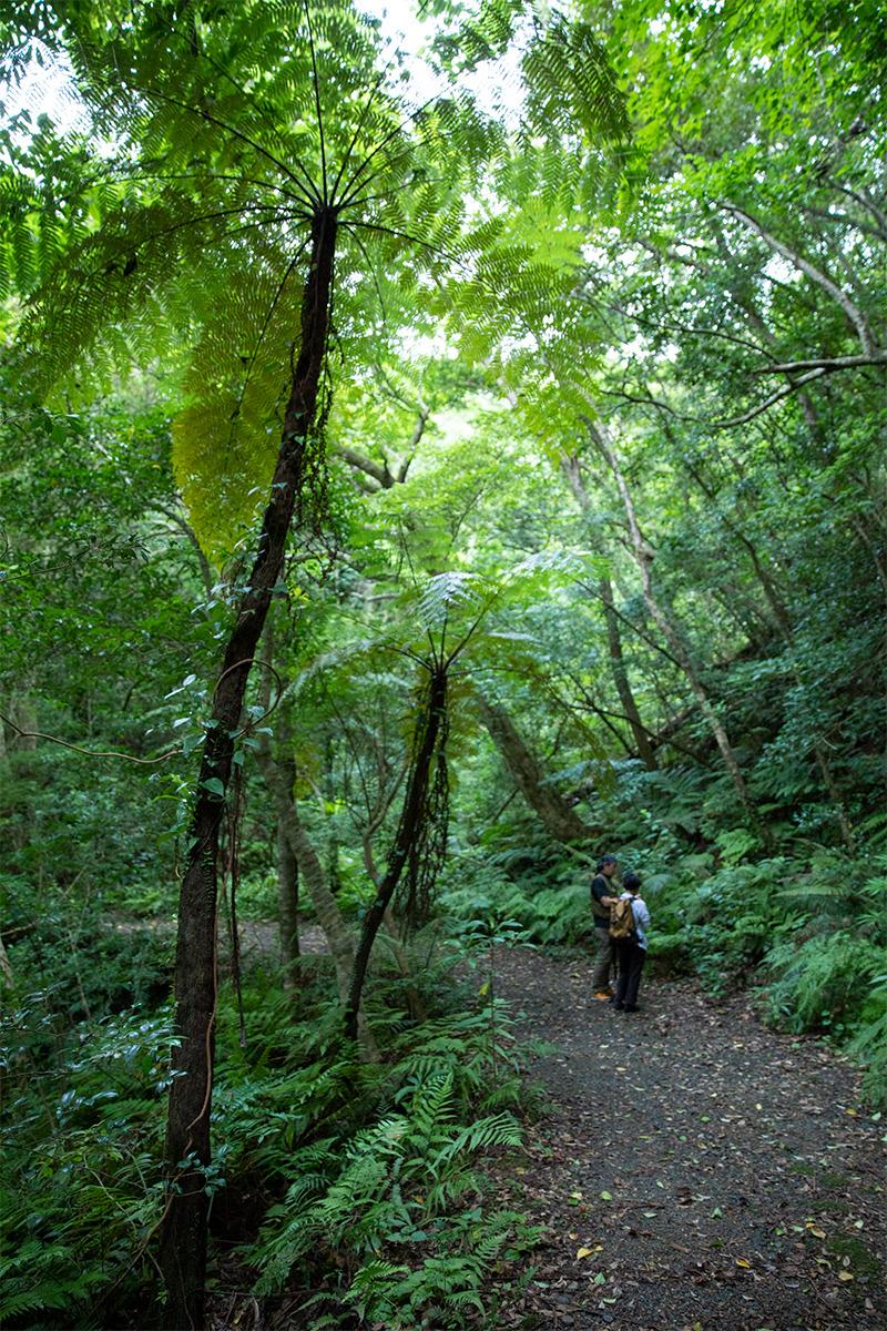 世界自然遺産の旅は<br>自然のスペシャリストに頼るべし。