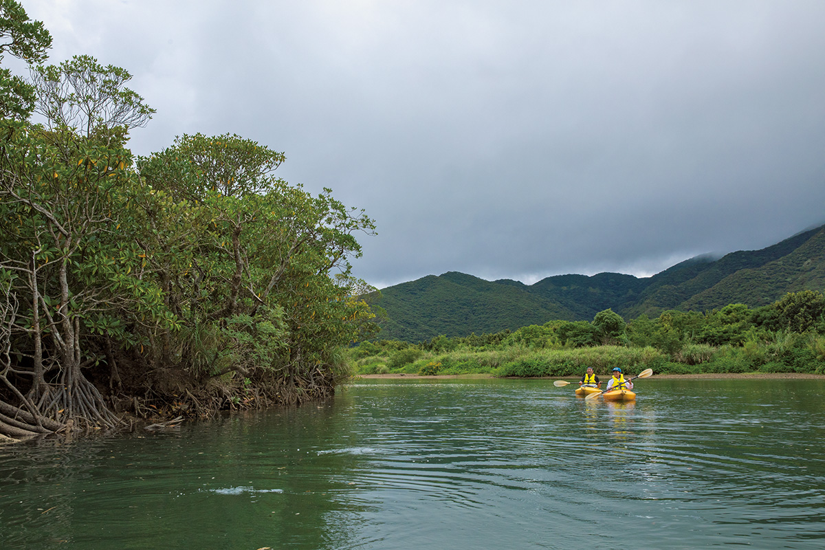 大自然と歴史・文化が残る奄美大島【後編】<br><small>《世界自然遺産をめぐる旅》</small>