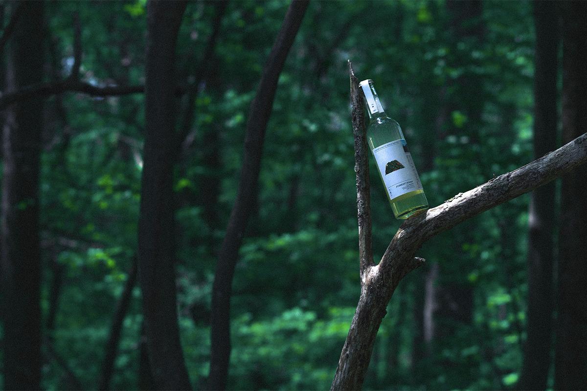 《木(食)人/もくしょくじん》<br><small>木の食用化を目指す新ブランドが誕生。</small>
